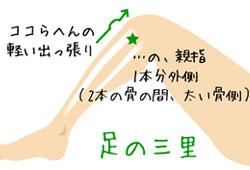 msg-fukurahagi003