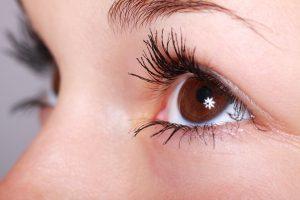 eye_sigaisen